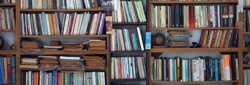 Evdə neçə kitabınız var? Maraqlı sorğu!